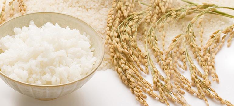 日本人だからこそお米にこだわろう!おすすめのお米はこれ!のサムネイル画像