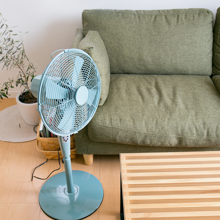 暑い夏は扇風機をリビングに置こう!今人気のおしゃれな扇風機!のサムネイル画像