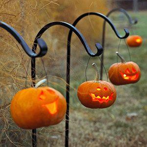 秋を感じて楽しもう!【ハロウィン・ガーデニング】の始め方のサムネイル画像