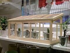 【冬のガーデニングにおススメ!】オシャレなミニ温室をご紹介!のサムネイル画像