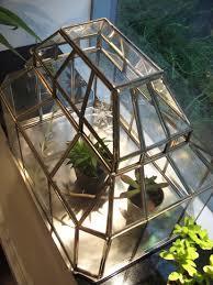 観葉植物にピッタリの温室ガラスケースはインテリアにもおススメ!のサムネイル画像
