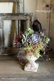 多肉植物の寄せ植えは、ガーデニングを楽しくする魅力満載!のサムネイル画像