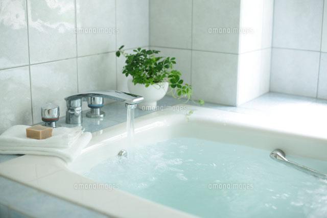 お風呂で緑を眺めてほっと一息☆バスルームに観葉植物を置こう!のサムネイル画像
