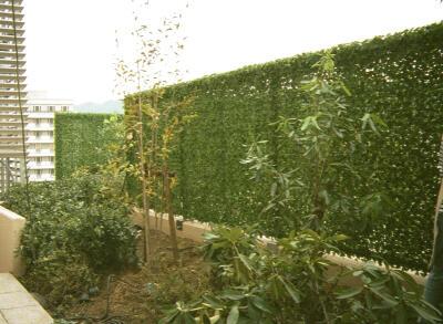 嫌味に思われない目隠しの方法とは?植物を使ってお洒落に目隠しのサムネイル画像