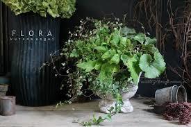 寄せ植えならグリーンの観葉植物が冬の室内ガーデニングにおススメ!のサムネイル画像