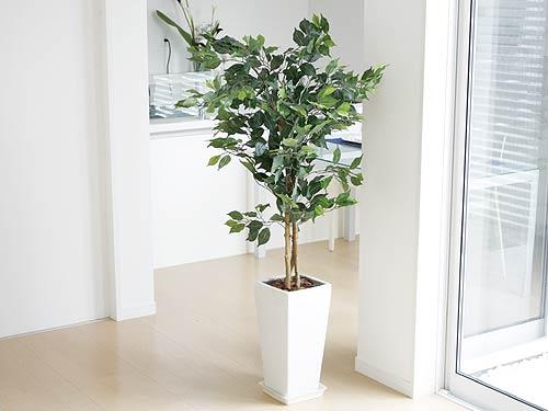 屋内の観葉植物には、人工的に作られた、造花のものがあります。のサムネイル画像