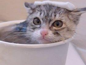お風呂の入浴剤代わりに重曹を♪お風呂に重曹でお肌つるつる♪のサムネイル画像