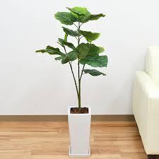 部屋の癒しの空間に、観葉植物のイミテーションを置いてみては?のサムネイル画像