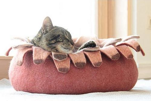 お昼寝が大好きなねこも喜ぶ♪おしゃれで居心地の良いねこ用ベッドのサムネイル画像