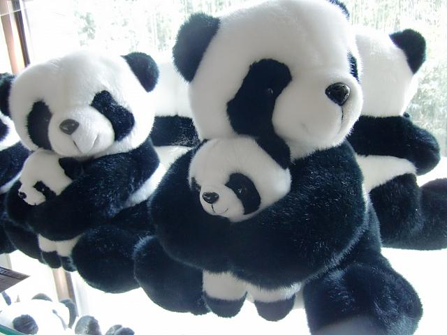 パンダ好きさん必見!可愛いパンダの雑貨たちを一挙ご紹介!のサムネイル画像