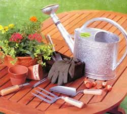ガーデニング(園芸)であなたの人生を少し楽しくしてみませんかのサムネイル画像