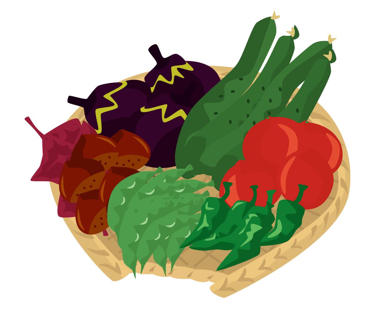 さあ、あなたも始めてみませんか~園芸で野菜を作ってみよう~のサムネイル画像