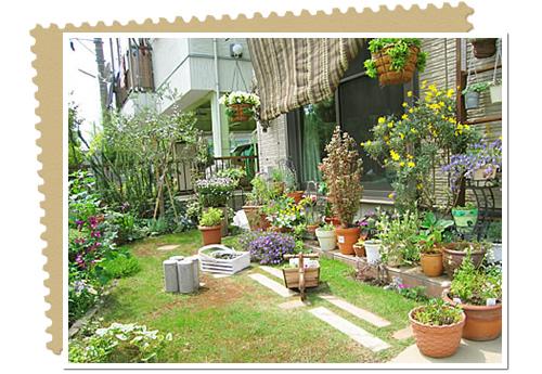 待望の春!今年はお庭でガーデニングを楽しんでみませんか?のサムネイル画像