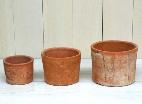 観葉植物や家庭菜園には必須アイテムの鉢!種類と選び方のポイントのサムネイル画像