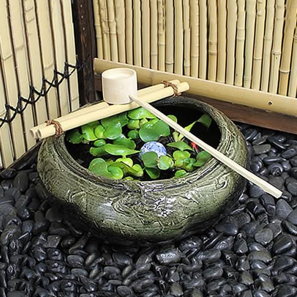 メダカを睡蓮鉢飼おう♪ビオトープにおすすめの関連商品を紹介!のサムネイル画像