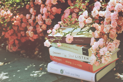 上品で優雅な花の女王♡バラ♡バラの季節はいつだかご存知?のサムネイル画像