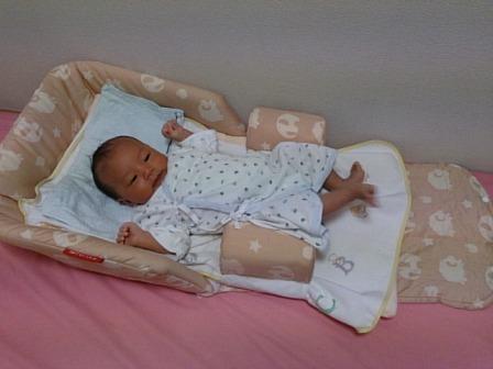 ファルスカのベッドインベッドが人気!売れ筋ベッドインベッド特集!のサムネイル画像