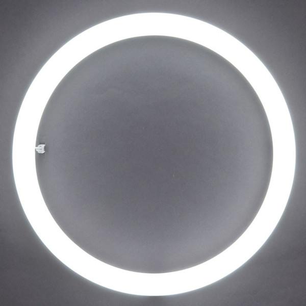 最近の丸型蛍光灯事情について紹介!いろいろな売れ筋を紹介します。のサムネイル画像