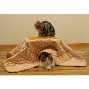 冬のお供にはこたつが一番!かわいいこたつ布団を探してみませんか?のサムネイル画像