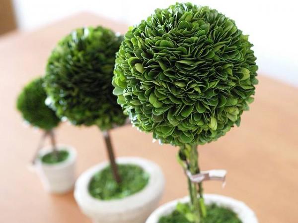 癒し度UP!可愛さUP!運気もUP! 観葉植物で寝室をもっと快適空間にのサムネイル画像