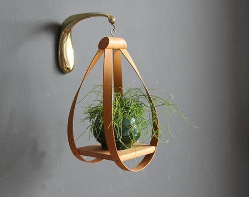 狭い部屋でもOKな壁掛けインテリア!緑の癒し「植物」を飾りましょうのサムネイル画像
