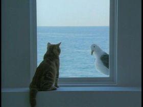 もしかすると丸見えかも知れません ガラス窓には目隠しすべきのサムネイル画像