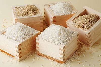 【秋の味覚】お米好きな方必見!美味しいお米の種類を一挙紹介のサムネイル画像