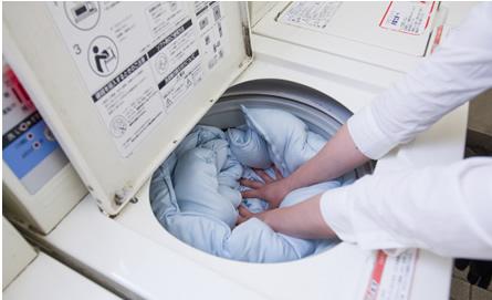 こんな布団が欲しかった!洗濯機で洗える布団が今売れていますのサムネイル画像