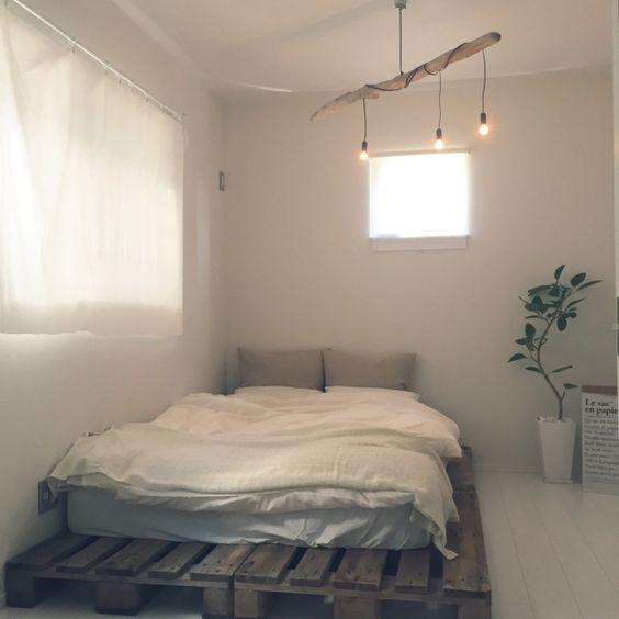 寝室にも観葉植物を置いて楽しもう!最適な種類を紹介しますのサムネイル画像