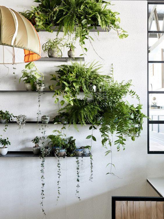 あるだけでハイセンスな部屋に。観葉植物はどんな台に置いたらいい?のサムネイル画像