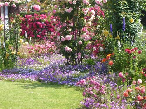 初心者さんにもお勧め!英国式ガーデニングでおしゃれなお庭にしようのサムネイル画像