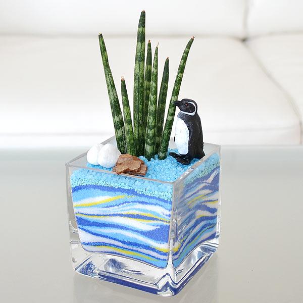 おしゃれに決まる!カラーサンドを使って観葉植物を飾りませんか?のサムネイル画像
