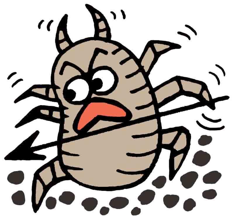 アレルギーの原因は布団かも!布団がダニの住処になっていませんか?のサムネイル画像