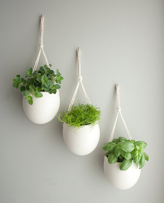 インテリア 観葉植物の飾り方でセンスがわかる ~画像まとめのサムネイル画像