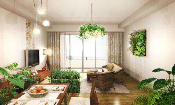 お部屋に一ついかがですか?観葉植物の持つ癒しの効果とは!のサムネイル画像