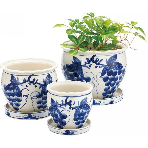 観葉植物を上品でオシャレに演出!おすすめの陶器の植木鉢をご紹介!のサムネイル画像