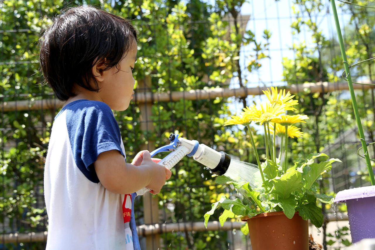 きれいなお花を咲かせましょう!お花の水やりのコツをご紹介☆のサムネイル画像