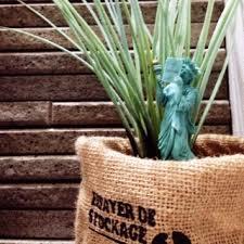 オシャレな鉢カバーを厳選!インテリアとして観葉植物を飾ってみて!のサムネイル画像