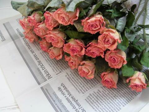 ドライフラワーの花材を選ぶならアンティーク調がおススメ!のサムネイル画像