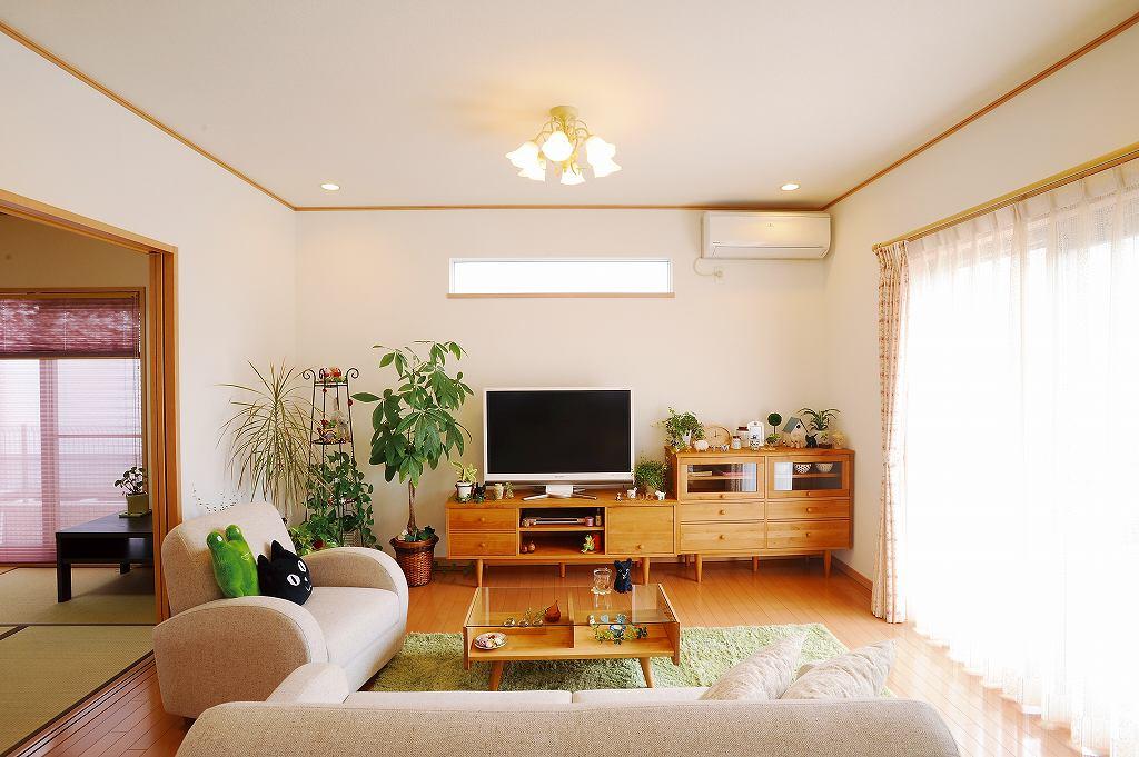 お部屋に観葉植物でリラックス!リビングに置きたい観葉植物まとめのサムネイル画像
