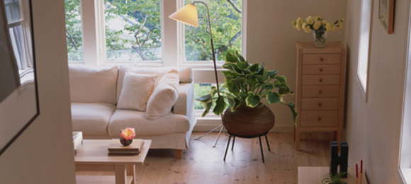 部屋がきれいな人は心もきれい?きれいなお部屋でもっといい毎日☆のサムネイル画像