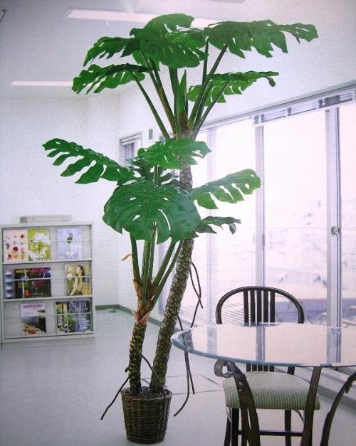 まるで本物、消臭や空気清浄効果もある!?おすすめ人工観葉植物のサムネイル画像