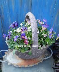 季節の花の寄せ植えをバスケットに!フラワーバスケットをご紹介!のサムネイル画像