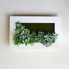 省スペース♪壁掛け観葉植物で楽しむ、おしゃれなインテリアグリーンのサムネイル画像