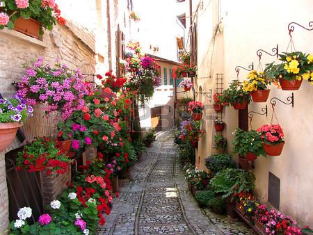 どこにだって咲く花がある!バルコニーに花を飾りたいあなたへのサムネイル画像