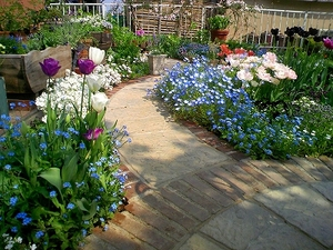 園芸で花いっぱいの庭にしてみませんか?初心者でも大丈夫☆のサムネイル画像