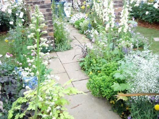 ガーデニングを始めたい!花壇、家庭菜園の作り方を教えて!のサムネイル画像