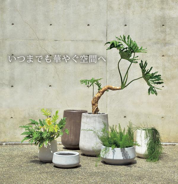 モダンなガーデニングを目指すなら植木鉢選びが重要です!!のサムネイル画像