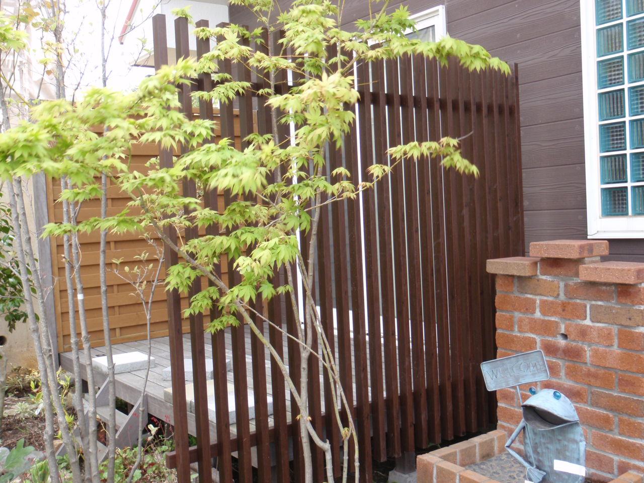 ガーデニングで楽しく目隠し♪適した植物、目隠しの方法を紹介!のサムネイル画像