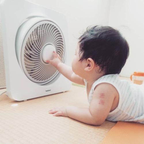 オールシーズン使える最新扇風機って!?おすすめの扇風機をご紹介!のサムネイル画像